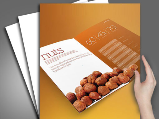 Nuts Company Branding and Identity